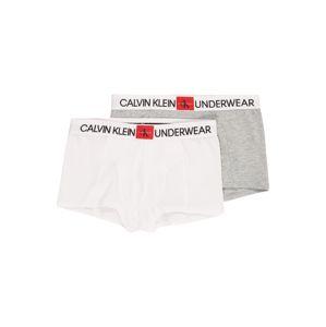 Calvin Klein Underwear Spodní prádlo '2PK TRUNKS'  šedá / bílá