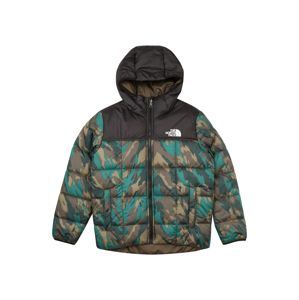 THE NORTH FACE Outdoorová bunda 'Perrito'  zelená / mix barev
