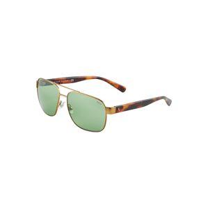 POLO RALPH LAUREN Sluneční brýle '0PH3130'  zlatá / hnědá / zelená