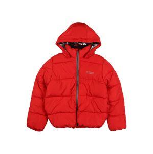 NAME IT Zimní bunda 'Milton'  melounová / stříbrná